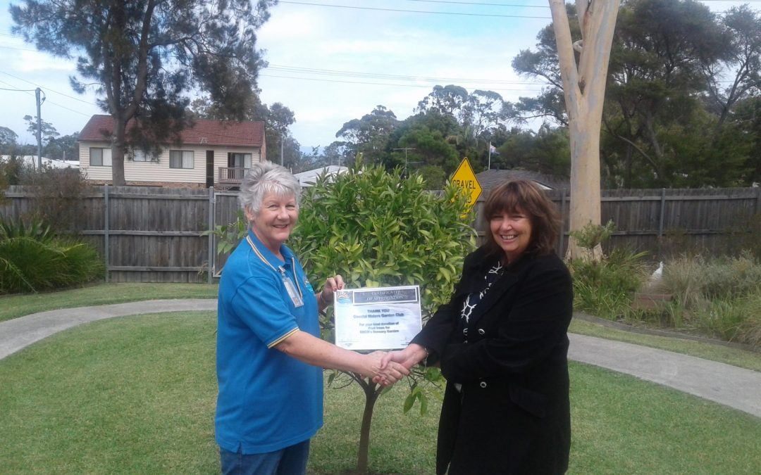 Volunteer's enriching the lives of individuals in their community